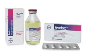 Avelox personal injury attorney